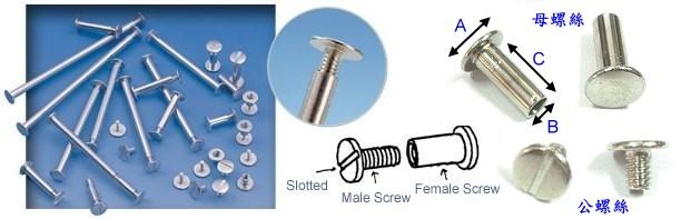 rivet screw